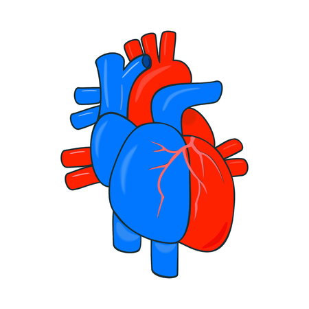 Human heart and trunk vessels in a conditional simplified anatomy. Abstract medical logo design 向量圖像