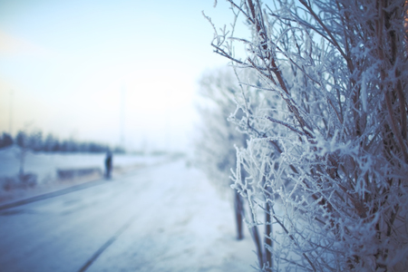 winter road: Winter morning in the coutryside. Stock Photo