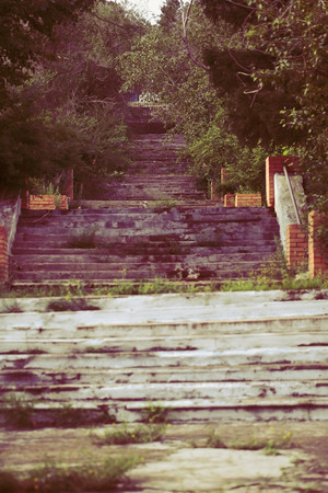Concrete grassy stairway in the old urban park.