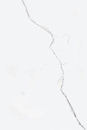 Bleached wall with cracks and delicate structure, the vector Illustration