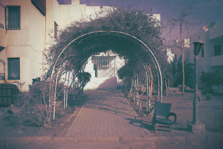 Forsaken house exterior with withered ivy-encircled sidewalk with empty space for your design. 版權商用圖片