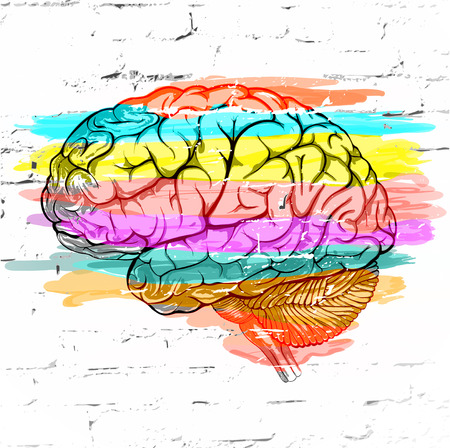 Abstract human brain colored striped  against a white brick wall as an expression of a variety of emotions and thoughts. Vector illustration