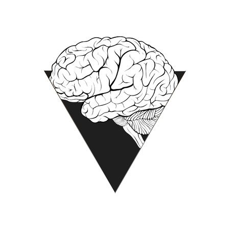 Нuman brain in a triangular window abstract form as a symbol of aspiration, confidence, intelligence. Isolated on white background. Illustration. Фото со стока