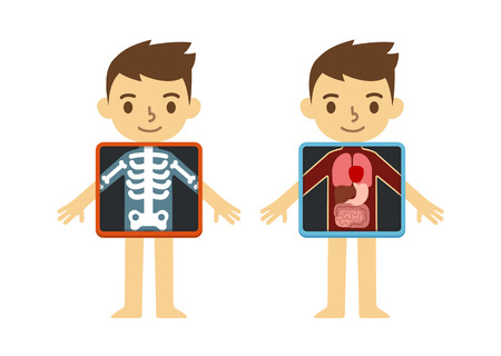 Two illustrations of cute cartoon boy with x-ray screen showing his internal organs and skeleton. Element of educational infographics for kids. Illustration