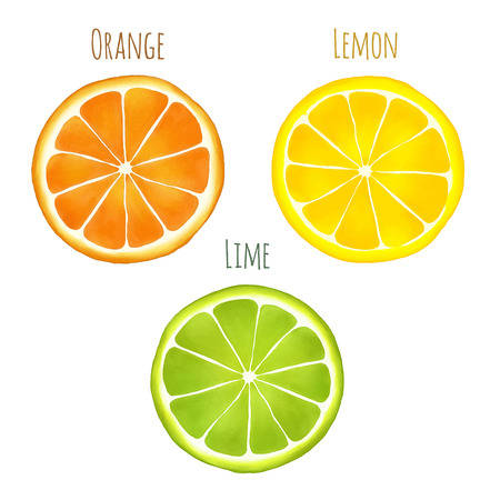 watercolor drawing of an orange, lemon and lime with captions isolated on white background.