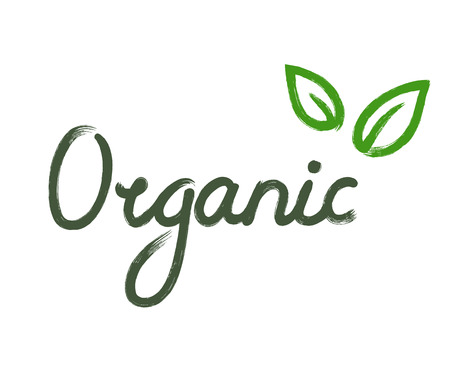 and organic: Hand drawn Organic sign with two green leaves isolated on white background.