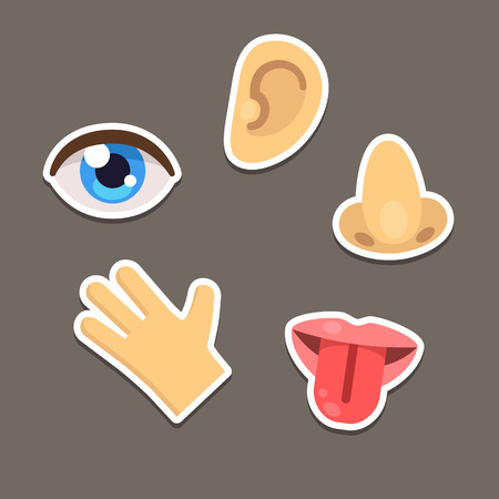 escuchar: Conjunto de cinco sentidos humanos símbolos, estilo plano de dibujos animados.