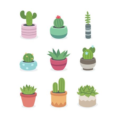 선인장과 냄비에 즙이 많은 식물. 그림 귀여운 작은 냄비에 성장 손으로 그린 선인장과 다육 식물의 집합입니다. 간단한 만화 벡터 스타일.