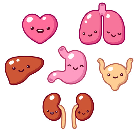 heart organ: Set of cartoon internal organs with cute faces. Vector illustration.