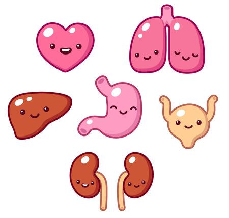 Set of cartoon internal organs with cute faces. Vector illustration.