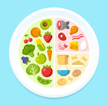 nutrition health: Healthy diet infographics: nutritional recommendations for the contents of a dinner plate. Vector illustration.