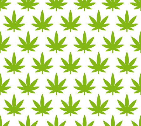 Cannabis plant seamless pattern. Simple stylized marijuana leaves on white background, vector illustration. 向量圖像