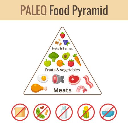 piramide alimenticia: Paleo carta pirámide de los alimentos. Infografía nutrición y la dieta. Ilustración del vector.