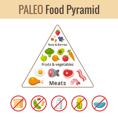nutrition: Paleo food pyramid chart. Nutrition and diet infographics. Vector illustration.