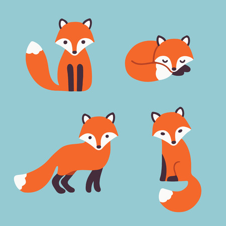 sly: Set of cute cartoon foxes in modern simple flat style. Isolated vector illustration Illustration
