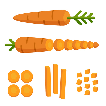 cartoon carrot: Different carrot cuts: sliced, cubed and cut in matchstick shape. Cooking illustration in modern flat vector style. Illustration