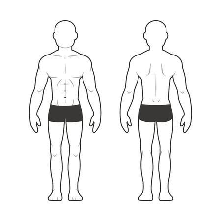 back to back: Athletic male body chart. Muscular man silhouette from front and back.