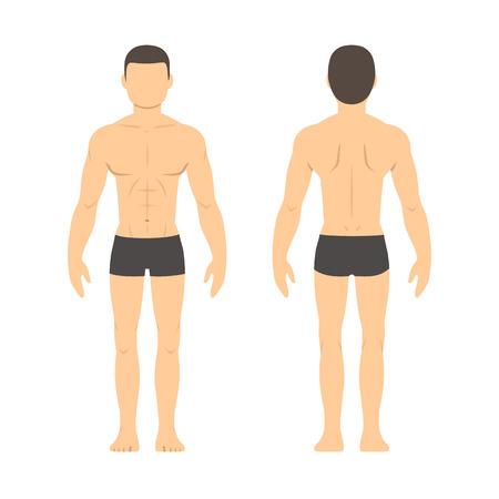 Athletisch männlichen Körper-Chart. Muskulöser Mann Körper von vorne und hinten. Isolierte Gesundheit und Fitness-Illustration. Vektorgrafik