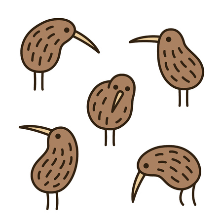 Set of doodle kiwi birds in different poses. Simple and cute hand drawn illustration.
