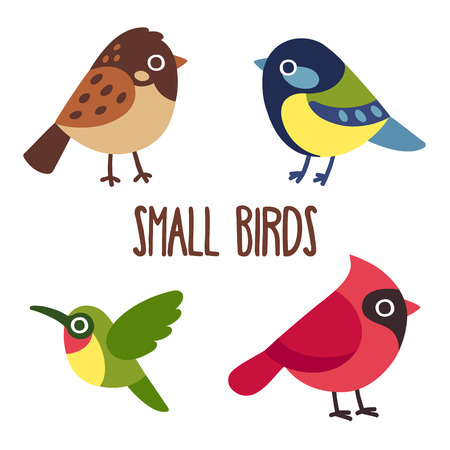 Cute cartoon wild birds set.  Sparrow and blue tit, colibri and red cardinal. bird icons. Иллюстрация