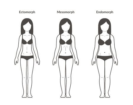 Female body types: Ectomorph, Mesomorph and Endomorph. Skinny, fit and overweight build. Fitness and health illustration. Ilustração