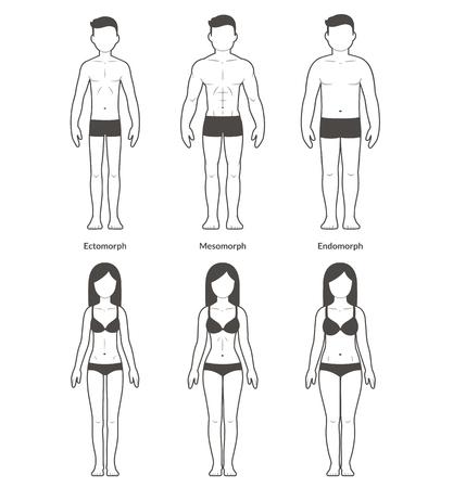 Maschili e femminili tipi di corpo: Ectomorph, Mesomorph e Endomorph. Skinny, muscolare e grasso bodytypes. Fitness e illustrazione di salute.