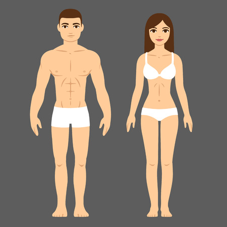 proportions of man: Man and woman with athletic body in underwear. Health and fitness vector illustration.