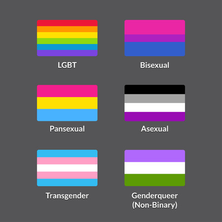 homosexual sex: Set of LGBTQA pride flags. Traditional rainbow flag, Bisexual, Pansexual, Asexual, Genderqueer (Non-binary) and Transgender symbols. icons collection.