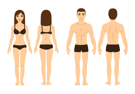young: Male and female body, front and back. Isolated vector illustration.