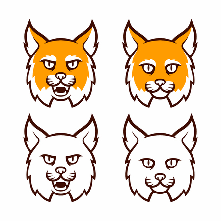 bobcat: Cartoon bobcat head set. Traditional comic style lynx, roaring and calm, in color and line art. Isolated illustration. Illustration