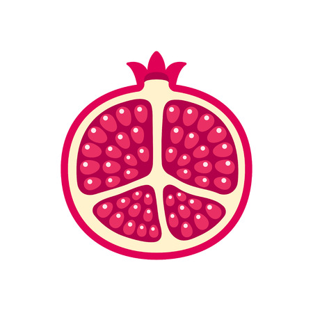 Pomegranate vector. Cartoon illustration of pomegranate cut in half on white background. Bright red fruit with shiny seeds.