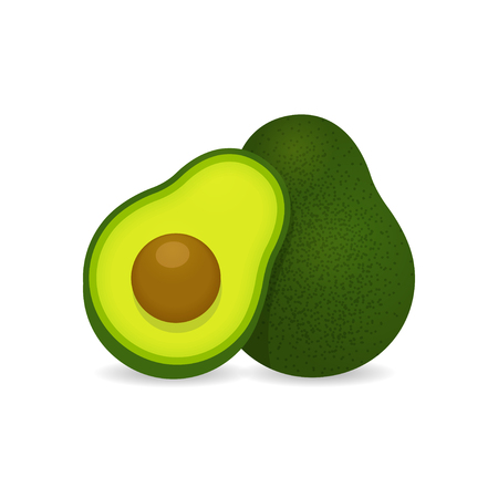 avocados: Realistic vector avocados illustration. Whole and cut avocado isolated on white background.