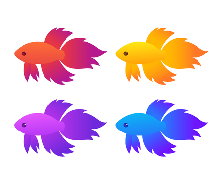 Siamese fighting fish (Betta Splendens) of different colors, isolated vector illustration.