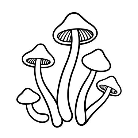 Magia setas Psilocybe cubensis línea de dibujo vectorial. Ilustración monocromática blanco y negro para colorear.