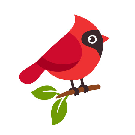 Red northern cardinal bird on tree branch. Cute cartoon vector illustration.