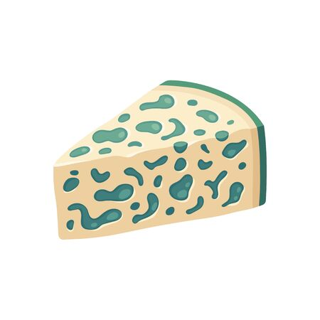 Blue cheese wedge with mold. Isolated vector illustration.
