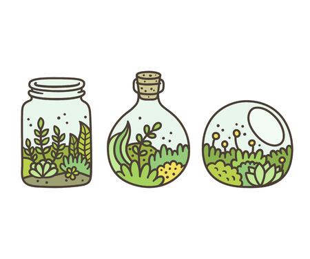 Pflanzen in Terrarien gesetzt. Moos, Sukkulenten und Blumen in Gläsern. Hand gezeichnete Gekritzelart-Vektorillustration.