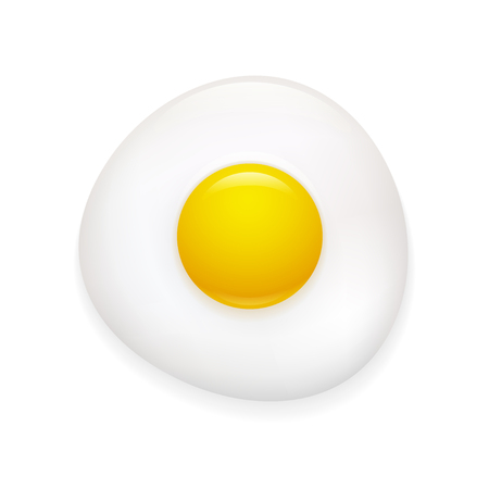 Realistic fried egg icon isolated on white background. Vector clip art illustration.