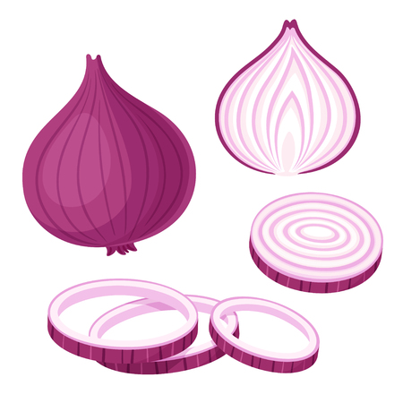 Red onion set. Cut in half, slice and onion rings. Isolated vector illustration. Vetores