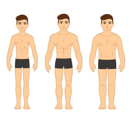 Male body types diagram: Ectomorph (skinny), Mesomorph (muscular) and Endomorph (stocky). Cartoon men in underwear, vector illustration.