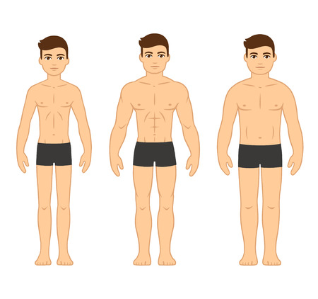 Male body types diagram: Ectomorph (skinny), Mesomorph (muscular) and Endomorph (stocky). Cartoon men in underwear, vector illustration.