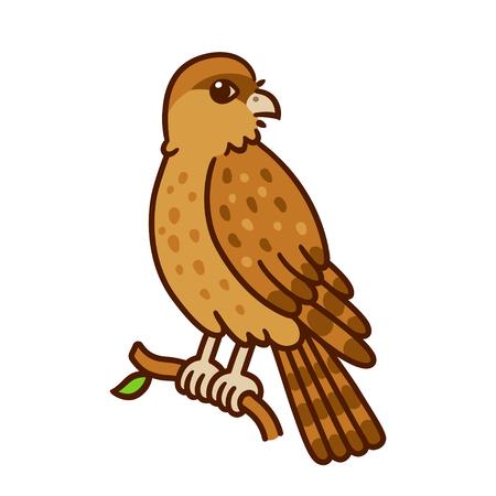 Cartoon tekening van Tiuque (Chimango caracara) wilde vogel inheems aan Zuid-Amerika. Leuke inheemse fauna vector illustratie.