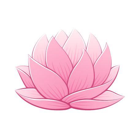 Pink lotus flower vector illustration. Beautiful realistic waterlily drawing.