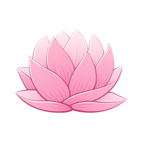 Ilustración de vector de flor de loto rosa. Hermoso realista waterlily dibujo.