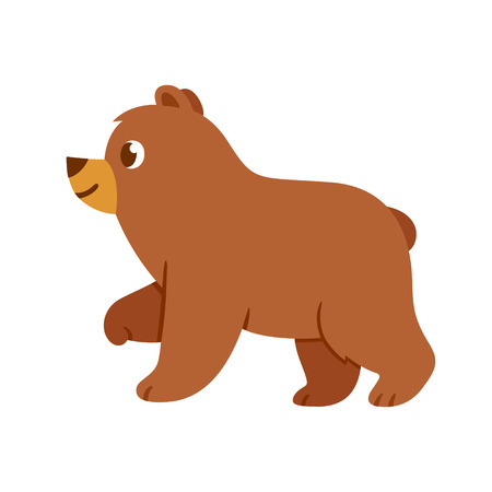 cute cartoon: Cute cartoon baby bear drawing. Brown bear standing in profile view, vector illustration for childrens book.