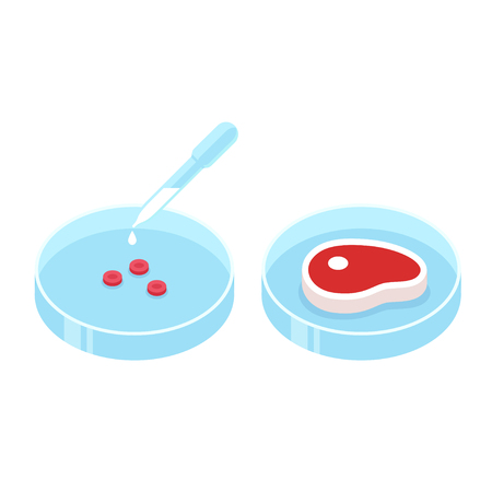Lab grown meat illustration. Petri dish with cell culture and beef steak, in vitro meat concept. Future food technologies.
