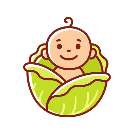 Cute cartoon baby found in cabbage patch. Funny explanation where babies come from. Vector clip art illustration.