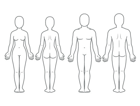 Male and female body front and back view. Blank human body template for medical infographic. Isolated vector illustration.