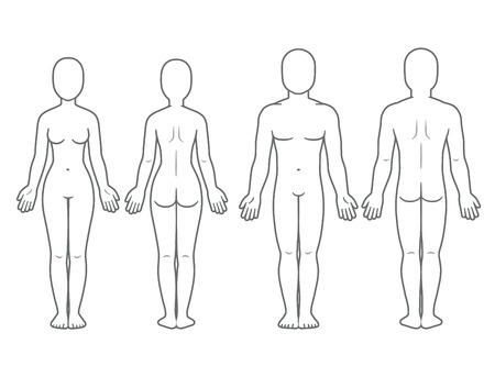 Widok z przodu iz tyłu ciała mężczyzny i kobiety. Pusty szablon ludzkiego ciała dla infografiki medycznej. Ilustracja na białym tle wektor.