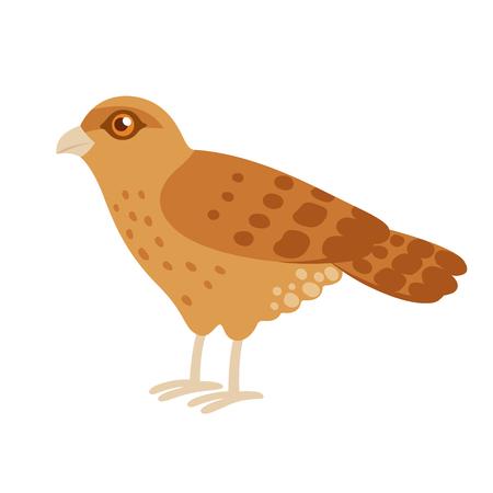 Tiuque, of Chimango Caracara, roofvogelvogel afkomstig uit Zuid-Amerika. Leuke cartoon stijl tekening, geïsoleerde vector illustraties illustratie. Stock Illustratie